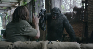 The human survivors seriously underestimate Koba (Toby Kebbell) in Dawn Of The Planet Of The Apes