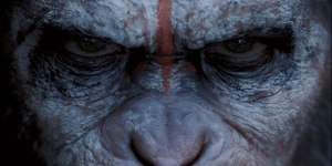 Caesar (Andy Serkis) in battle mode in Dawn Of The Planet Of The Apes