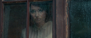 Sidse Babett Knudsen's Cythia in The Duke Of Burgundy